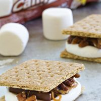 Campfire Turtle S'mores