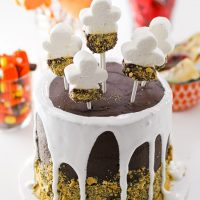 Spooky Halloween S'mores Cake