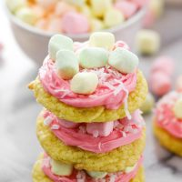 Colorful Tutti Fruity Coconut Cookies