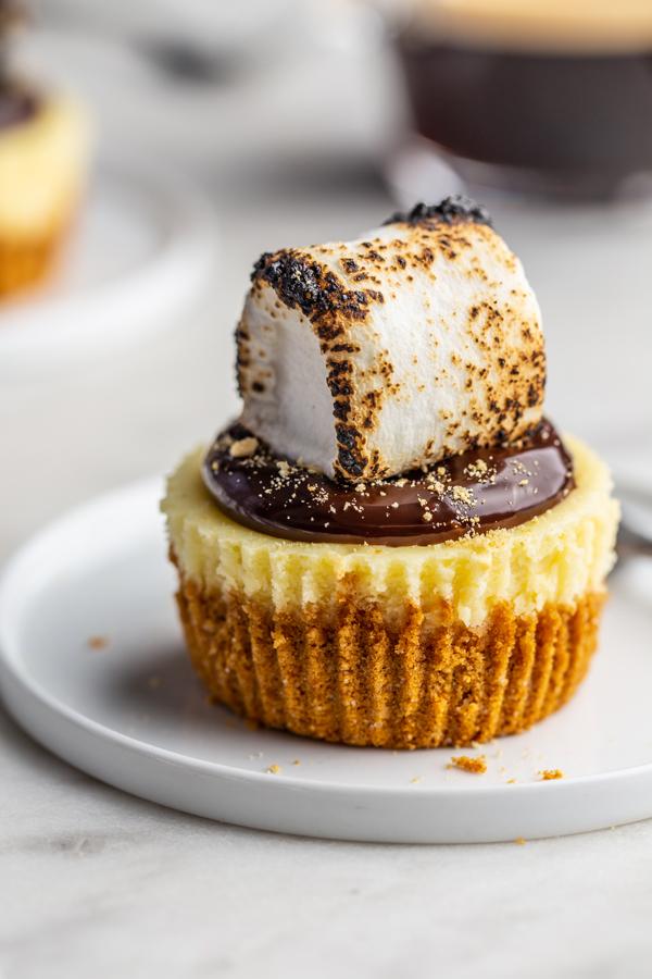 Mini S'mores Cheesecake with toasted marshmallow on top